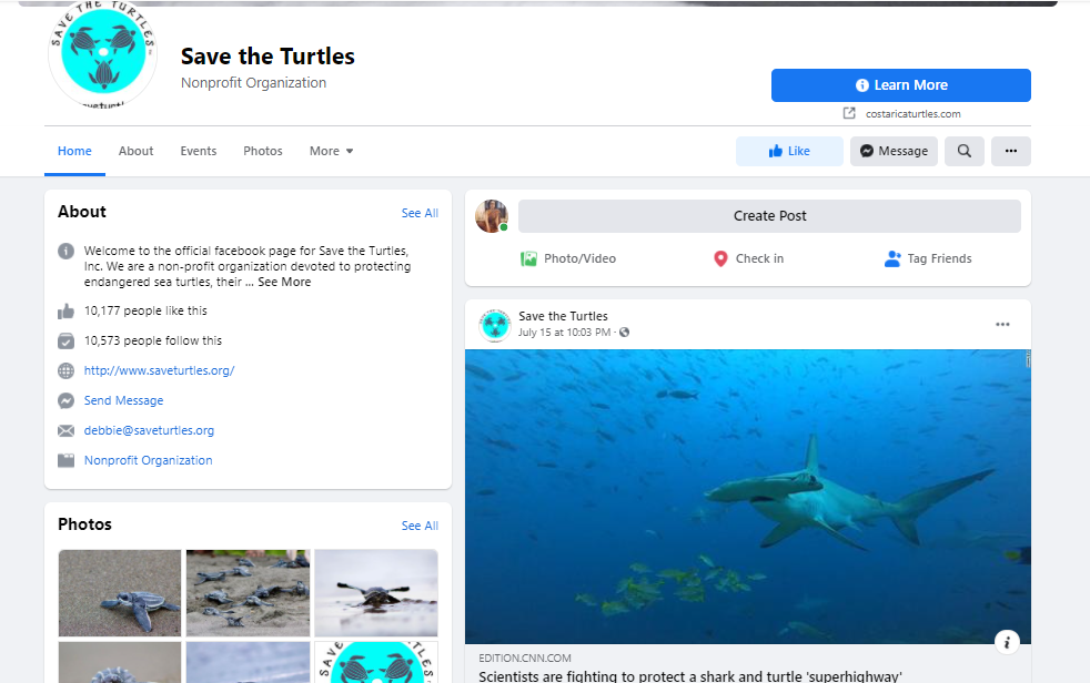 screenshot of Save the Turtle's Facebook page